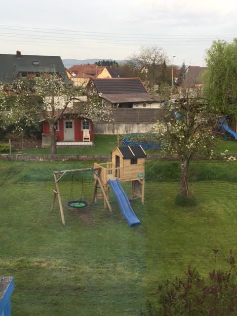 הנוף מהחלון שלנו