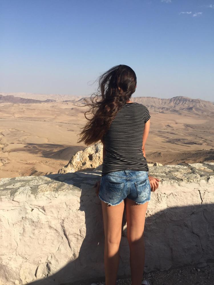 תצפית על המדבר והמכתש